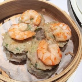 鮮蝦魚蓉白燒賣 - Sun Tung Lok Chinese Cuisine in Tsim Sha Tsui