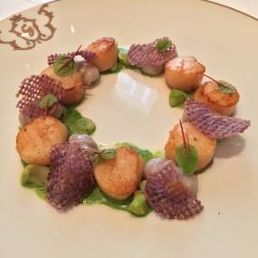 Very pretty scallop dish!  - Gaddi's in Tsim Sha Tsui