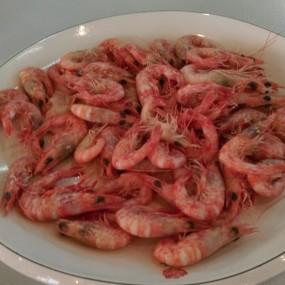 白灼海蝦 - New Baccarat Seafood Restaurant in Cheung Chau