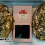 生蠔 / 牡蠣(カキ) / Fresh Oyster~【殻付●活品】Just arrived ● 剛到店 ( ´▽` )ノ 市場から直送!鮮度が自慢の海鮮@甘豐寿司!